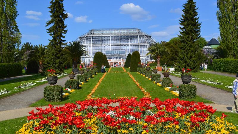 مکان های دیدنی آلمان- باغ گیاه شناسی آلمان
